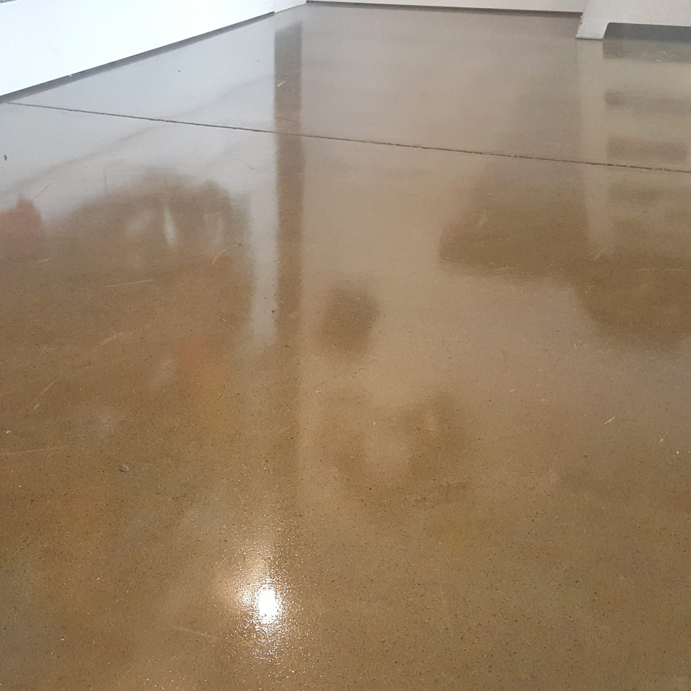 san our willow valley polished silicon floors gallery jose work polishing floor basement concrete glen