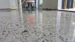 Eco Grind - Random Exposure Polished Concrete Elwood (8)