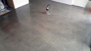 Eco-Grind---Random-Exposure-Polished-Concrete-Elwood-feat