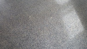 Eco Grind - Polished Concrete Floor Cairnlea (8)