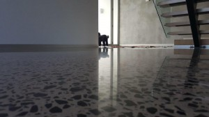Concrete Polishing Melbourne (24)
